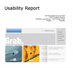 SITE X (usability report)